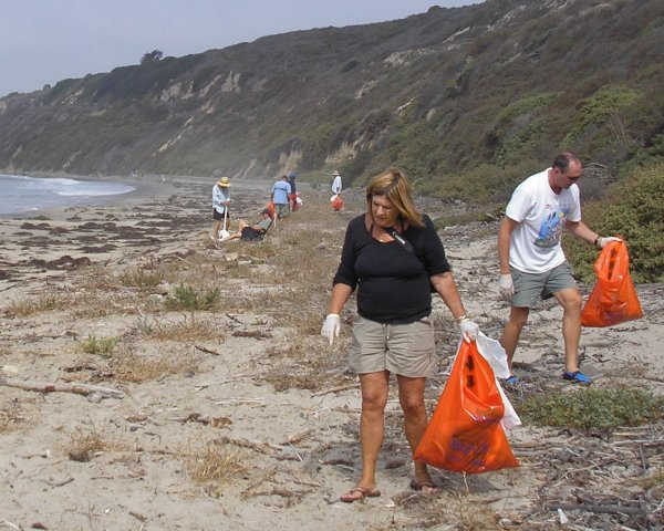 people with orange bags cleaning up the beach